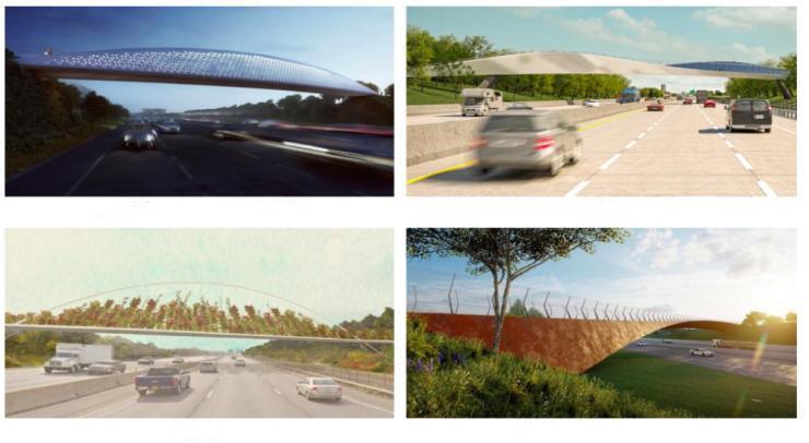 Buffalo pedestrian bridge - shortlisted entries
