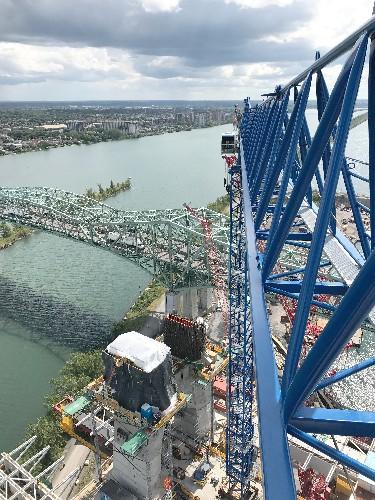 New Champlain - Linden Comansa