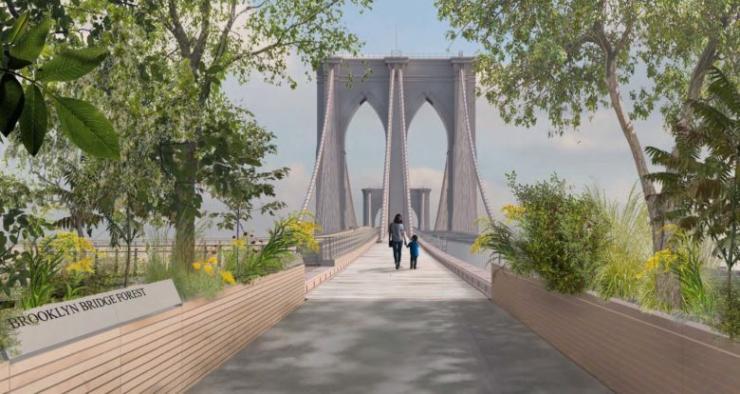 Brooklyn Bridge Forest -  Reimagining Brooklyn Bridge